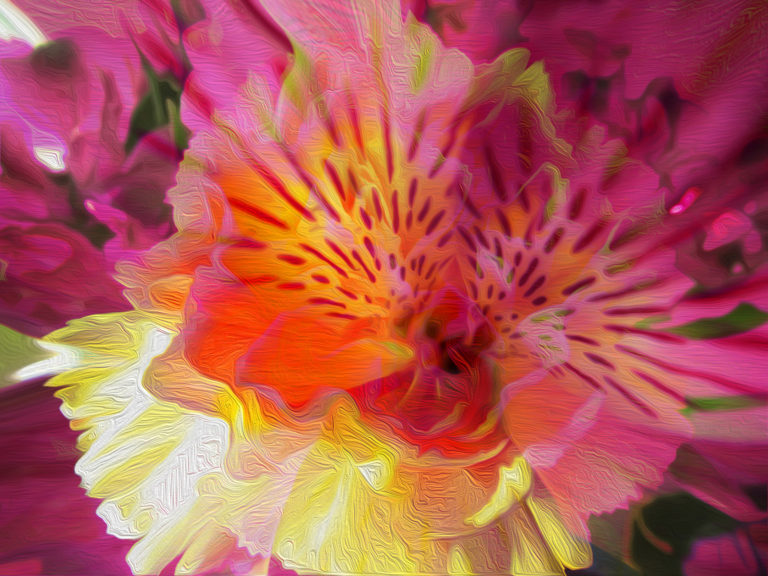 adventure of life flower